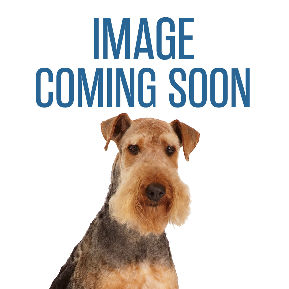 Boss Pet™ Rubber Flyer Dog Toy