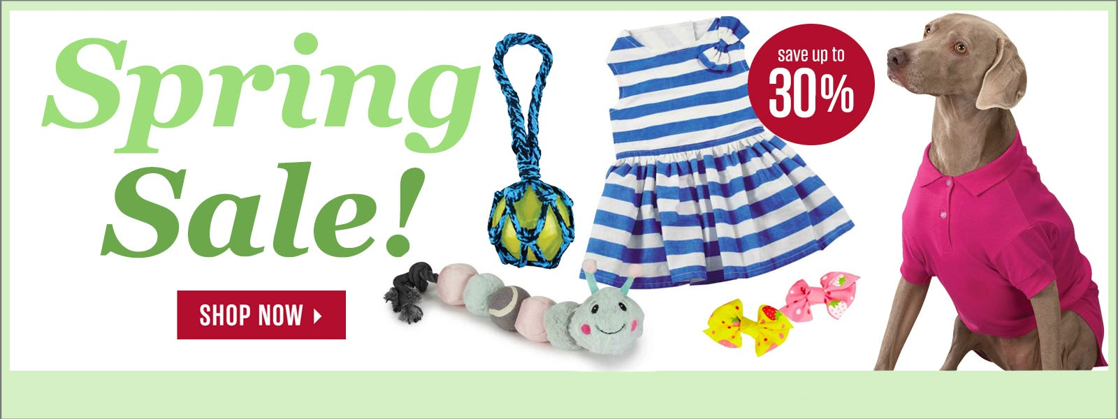 Spring Sale!